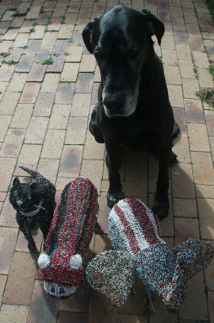 Zsa Zsa looking after her beaded friends.