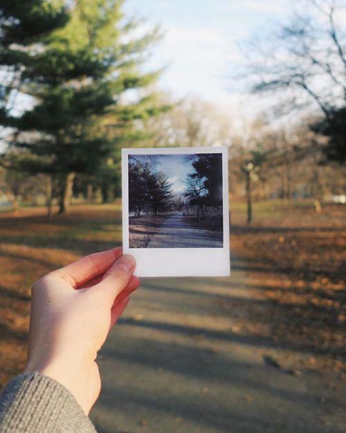 We appreciate a straight-shooter  via Polaroid on Instagram - #photographer #photography #photo #instapic #instagram #photofreak #photolover #nikon #canon #leica #hasselblad #polaroid #shutterbug #camera #dslr #visualarts #inspiration #artistic #creative #creativity