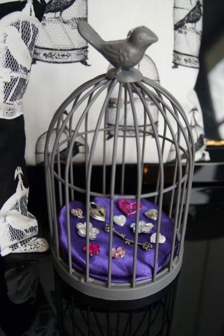 Moline-mercerie-cage-a-oiseau-en-vitrine