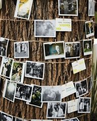 tree // pictures on a string // party decorations