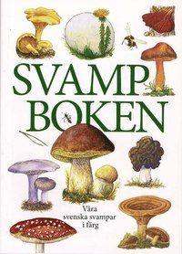 Svampboken : våra svenska svampar i färg (inbunden)