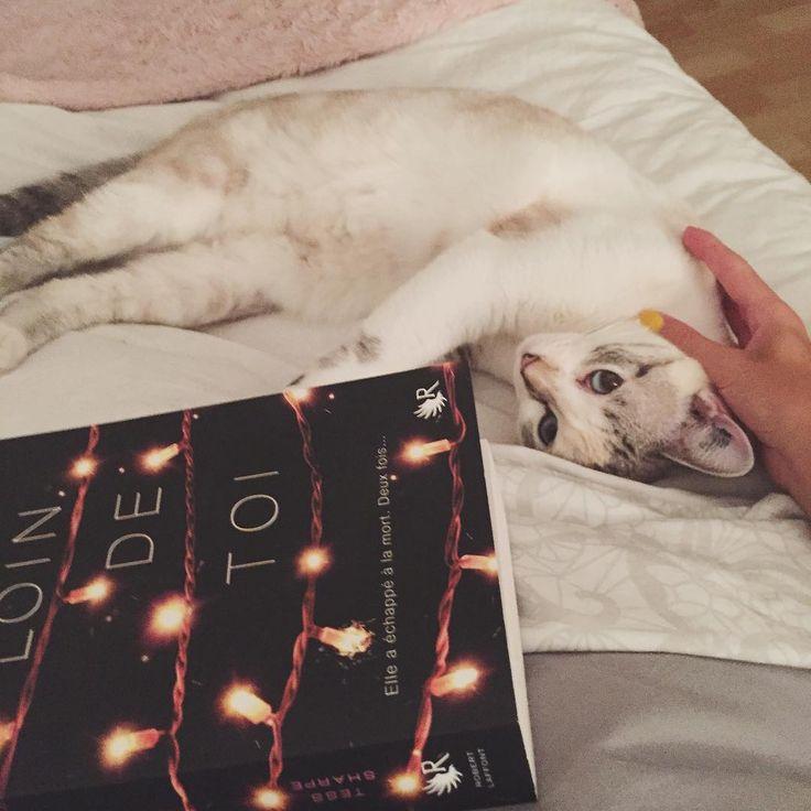 Comment voulez-vous que je lise (btw ce livre est) tranquille avec cette bouille d'amour ?