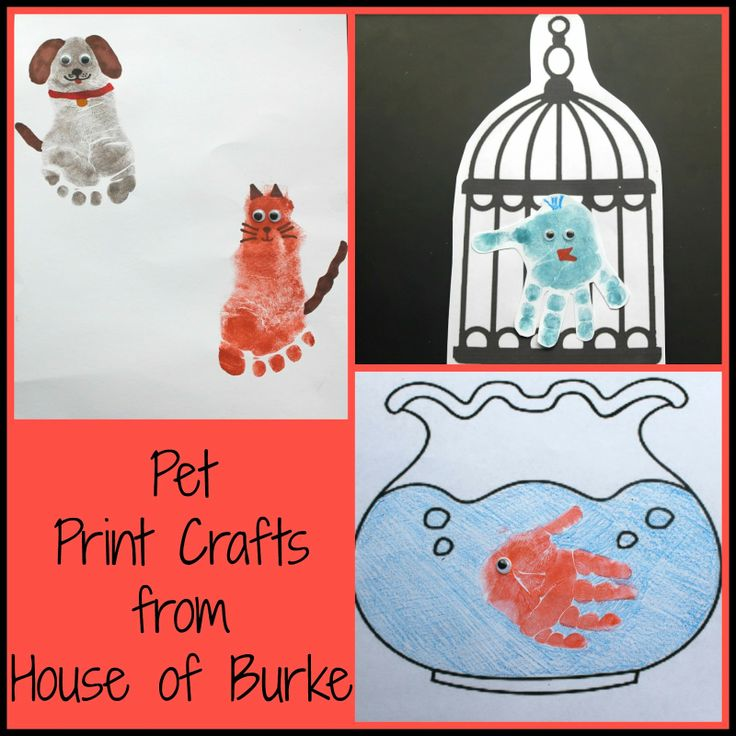 Pet Print Crafts - House of Burke