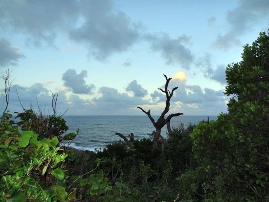 Australia - Queensland, Byron Bay