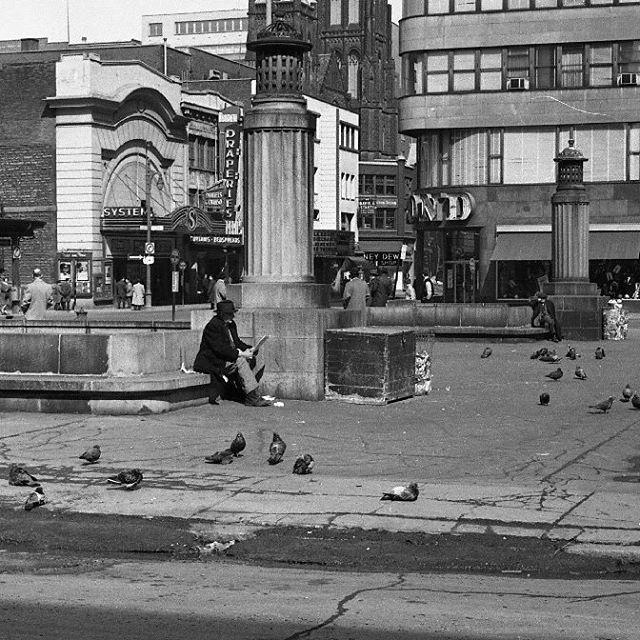 Les vespasiennes du square Phillips en 1963 sont cachées depuis plusieurs années sous les rénovations de la place publique. Mais les pigeons sont toujours présents. . Archives de Montréal VM94-A0096-009 . . #514 #mtl #yul #montreal #montréal #montréaljetaime #streetsof514 #montreallife #illuminationMTL #jaimemtl #cinqcentquatorze #mtlmoments #archives #history #archivesmtl #vintage