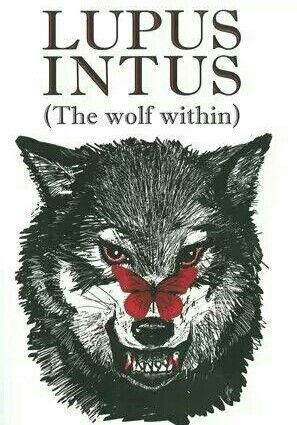 Lupus Latin word for wolf