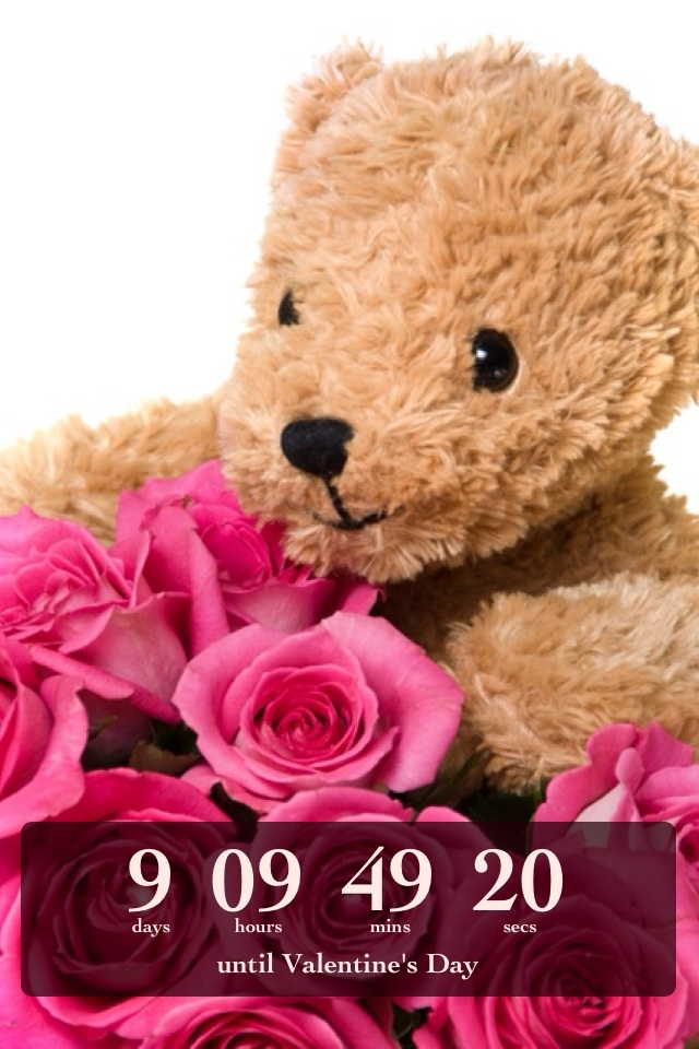 countdown to valentine's day book