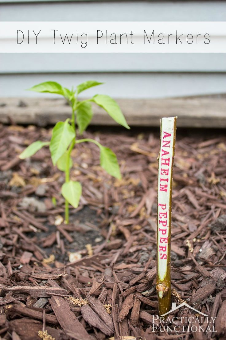 DIY Twig Plant Markers For Your Garden   Gardens, Plant ...