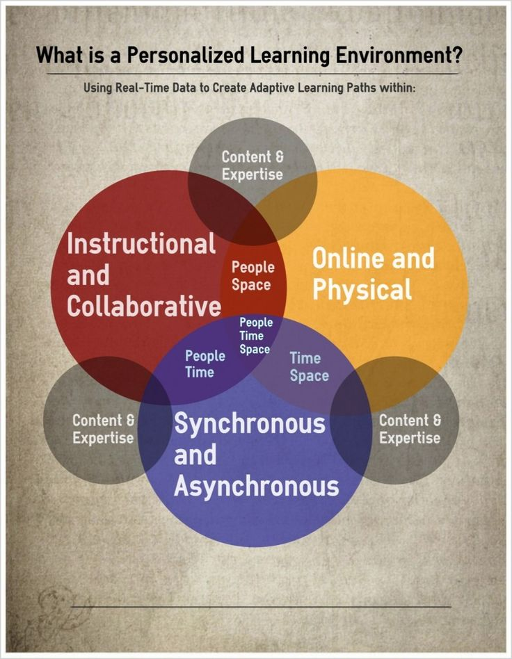 The Personalized Learning Environment Diagram and the Blended - needs assessment