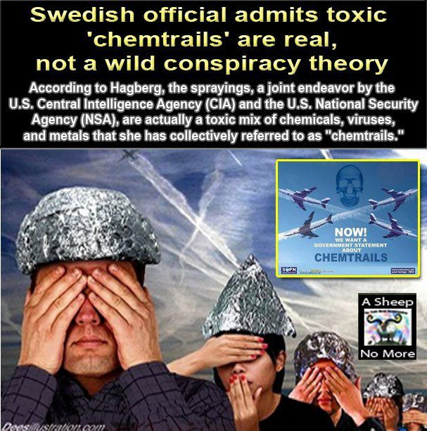 Swedish official admits toxic 'chemtrails' are real, not a wild conspiracy theory - A Sheep No More