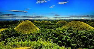 Bohol's most famous tourist attraction.