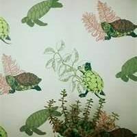 Turtle Turtle | PaperRoom