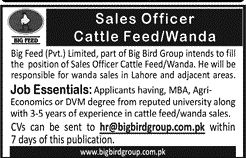 Sales Officer Jobs In Big Bird Groups Of Company