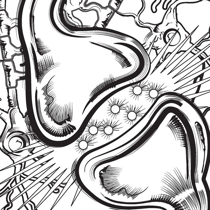 Who Feels Like Coloring Check Out The New BioLegend Book For IPad