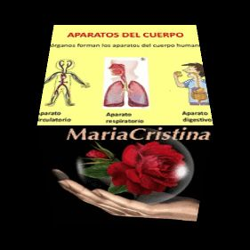 """""""RECURSOS EDUCATIVOS CRISTY""""  SANTIAGO - CHILE: APARATOS DEL CUERPO HUMANO"""