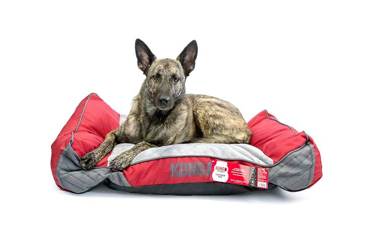 KONG Lounger Dog Bed - Red - Chew Resistant *** Details can be found by clicking on the image. (This is an affiliate link and I receive a commission for the sales)