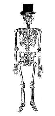 Vintage Halloween Clip Art - Fancy Skeleton Man from The Graphics Fairy #free #printable #halloween #skeleton