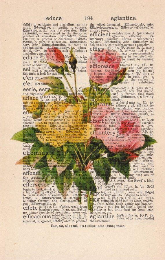 Vintage Libro Dizionario Stampa o Encyclopedia Pagina Stampa di PRRINT