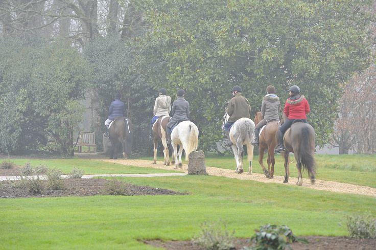Domaine des Etangs - #Massignac #equitation #horse #horseriding #activities #children