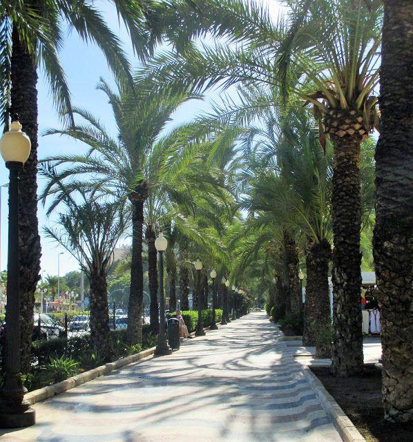 Kom met me mee naar Alicante Spanje