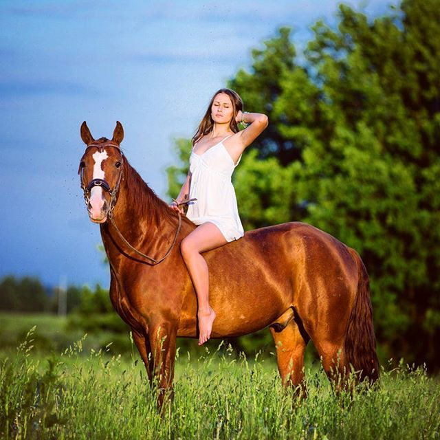 Instagram media by holly_madchen - May #holly_photo #конныйфотограф #фотографмосква #фотографвмоскве #фотосессиямосква  #equinephotography #equinephotographer #equineart #equine  #девушка #лошадь#elegant