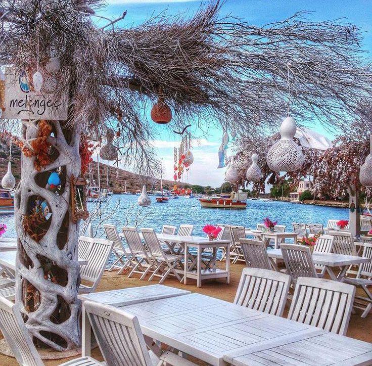 MİMOZA & MELENGEC RESTAURANT GUMUSLUK BODRUM TURKEY