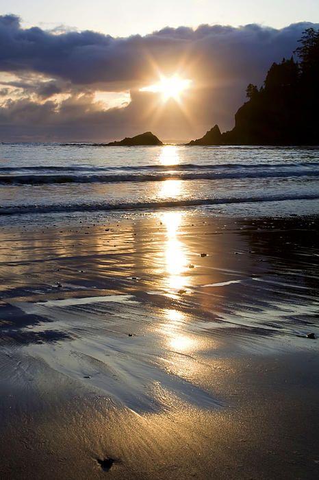 Golden Sand Sunset ~ Sunset Bay State Park, Oregon Coast :: © Patricia Davidson
