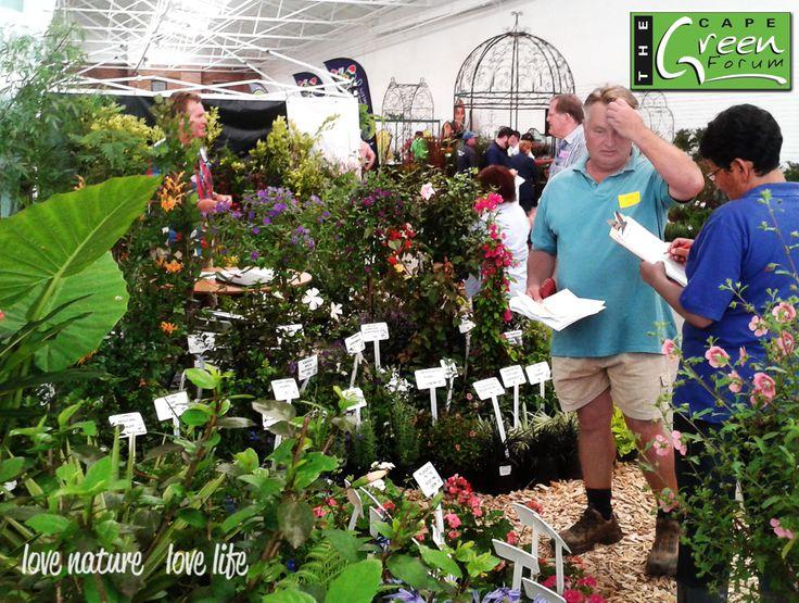 Cape Green Forum Trade Day • Stellenbosch
