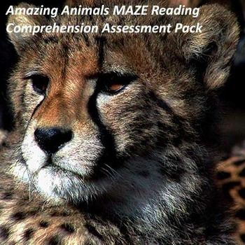 This pack includes 9 reading passages about amazing animals. Following each passage is another version of the passage in MAZE reading comprehension assessment format. This means that the passage is altered so that every few words the reader is prompted to select the word that makes the most sense out of three possible answers. This forces the reader to think about what words would have the best meaning in light of the passage.