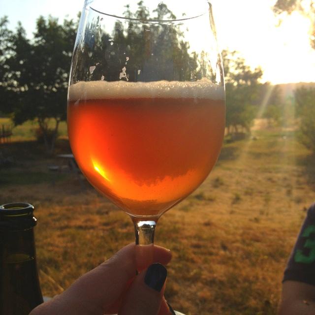 Panil beer