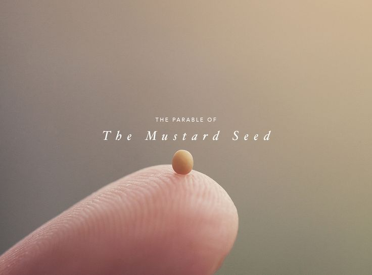 The Parable of the Mustard Seed - First15