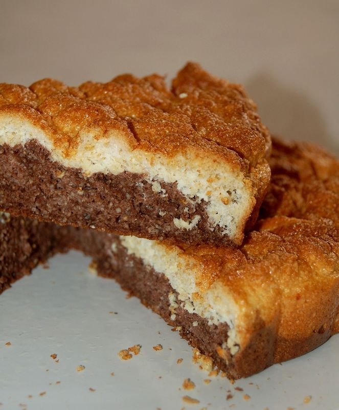 Marbr__chocolat_vanille_Dukan_021
