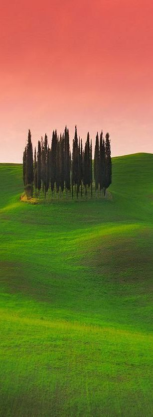 Tuscany, Italy …
