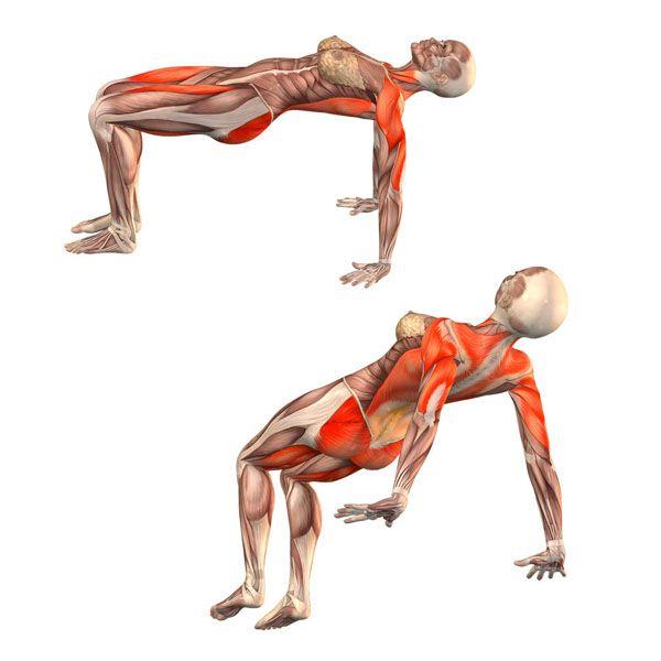 Upward table pose - Sahaja Purvottanasana - Yoga Poses | YOGA.com