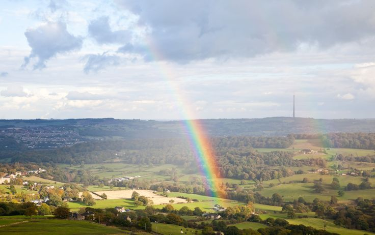 Rainbows are an arc-shaped spectrum of light which are caused by the reflection of light in water droplets.