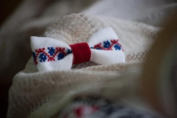 Papion alb cu albastru si rosu