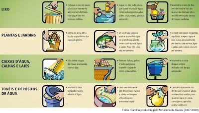 Como combater a dengue - dcoracao.com - blog de decoração
