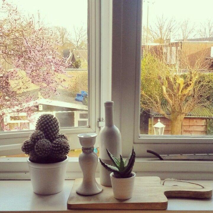 Uitzicht vanuit mijn raam met het zonnetje