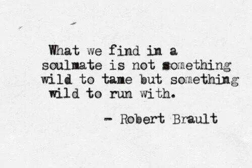 We're supposed to run wild together...its not all supposed to be so perfect