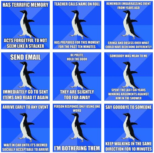 This is my life explained in one pin right here... I AM. socially awkward penguin.