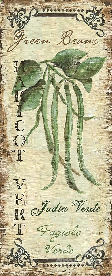 Vintage Vegetables 2 Painting  - Vintage Vegetables 2 Fine Art Print