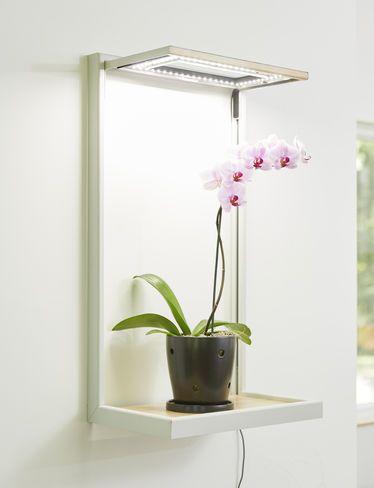 15 Best Grow Lights Images On Pinterest Indoor 400 x 300