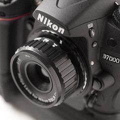 holga lens for digital camera