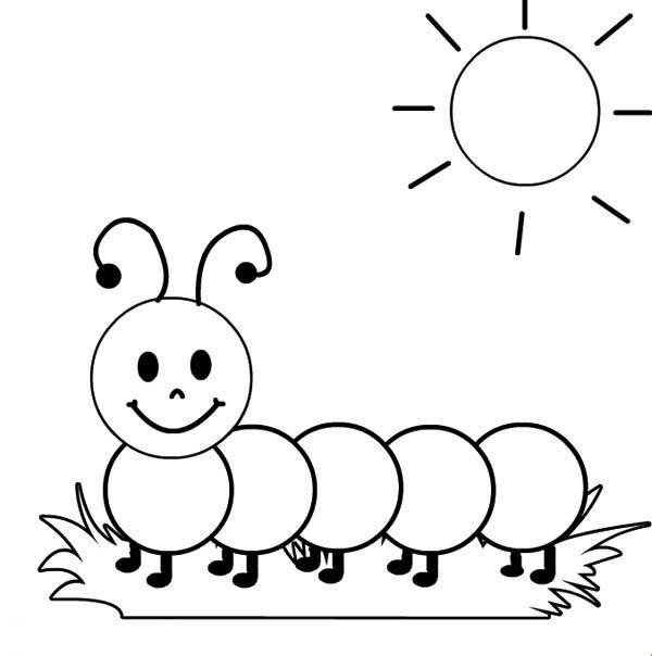 Cute Caterpillar Coloring Pages For Kids Coloring Pages Animal Coloring Pages Art Drawings For Kids