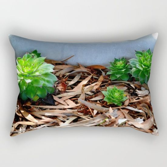 #Succulents #Pillow #decor