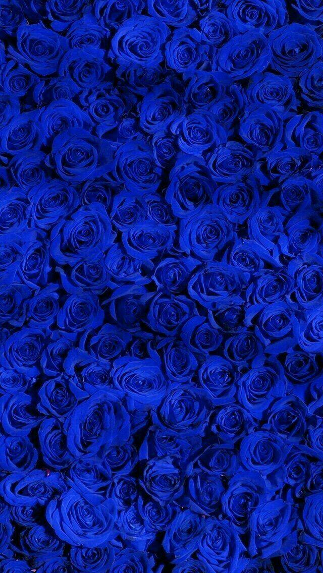Видео, картинки синего цвета на телефон