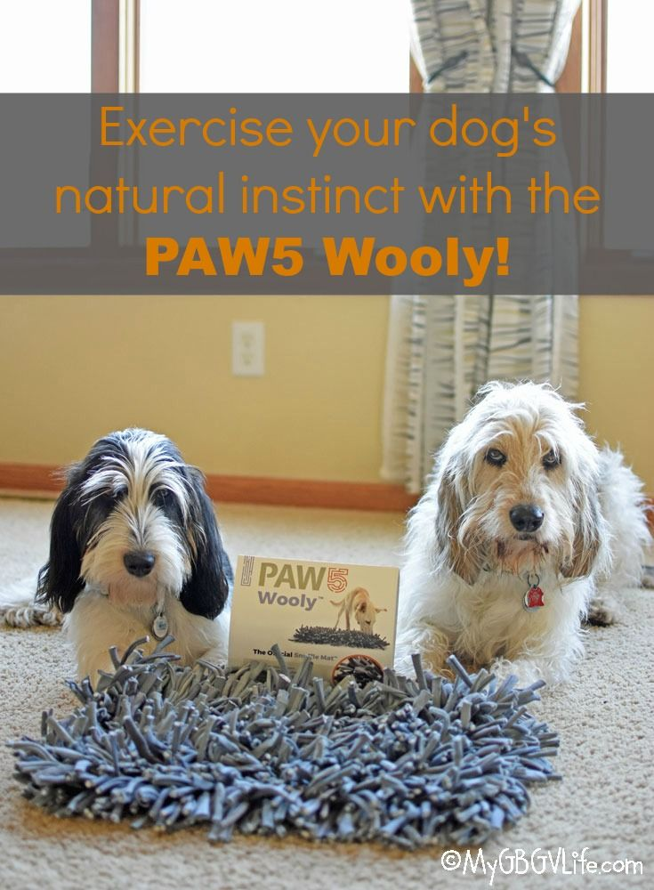 My GBGV Life Exercise Your Dog's Natural Instinct With The  @PAW5us Wooly