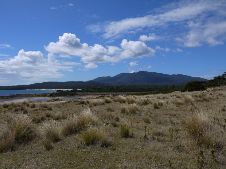 Another Maria Island Postcard landscape!