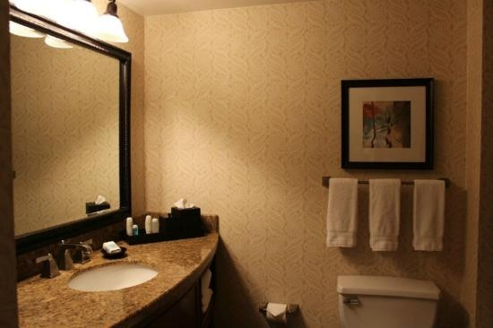 Omni Austin Hotel Downtown: Bathroom