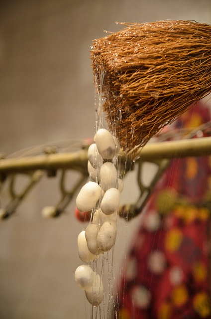 Silk worm cocoons about to be unspun - Silk cloth is lightweight, but warm in cool weather. Real silk is comfortable in hot weather, because it absorbs moisture without feeling wet.